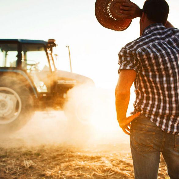 Agricoltura Midland
